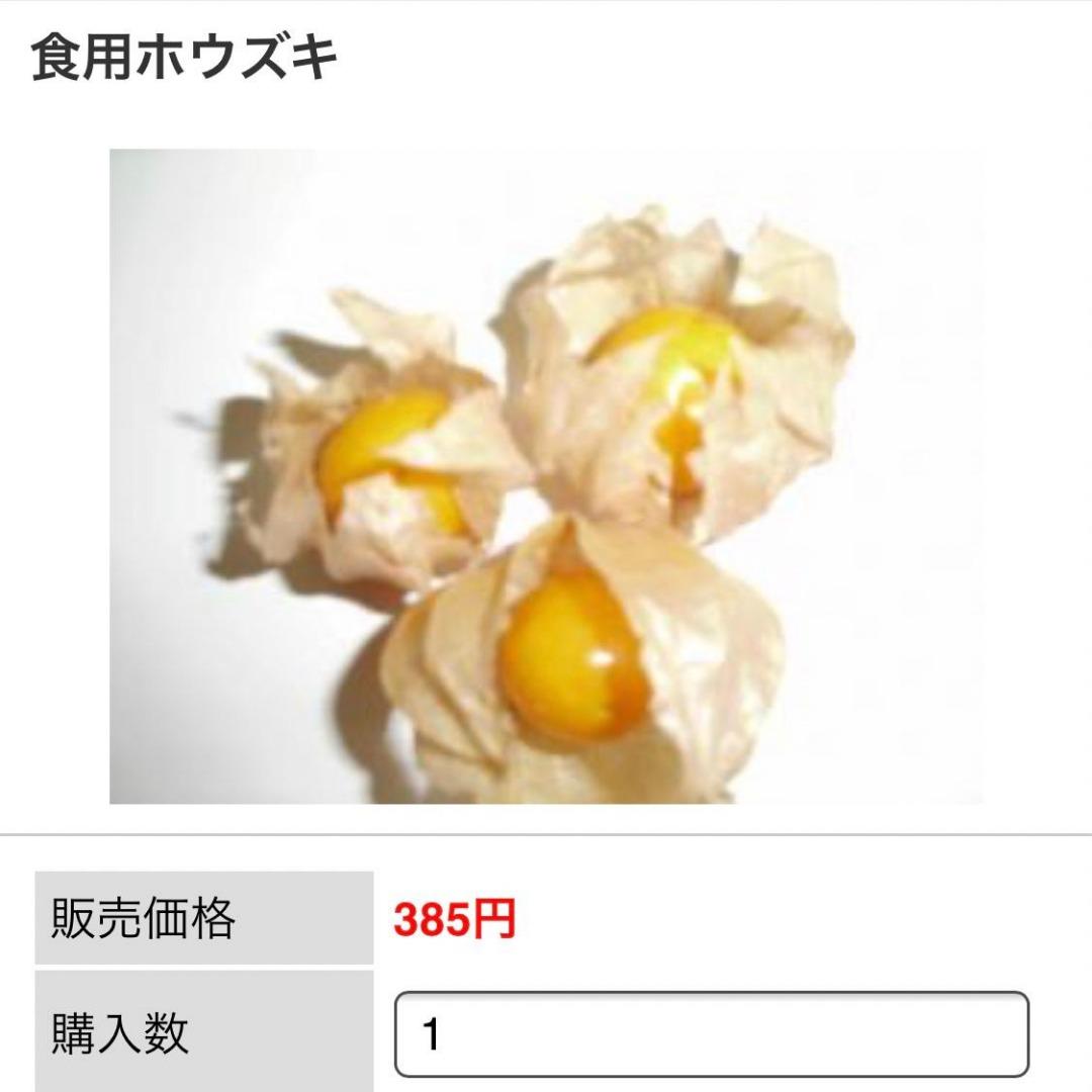 北海道で食用ほおずき