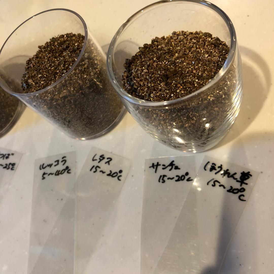 水耕栽培種まき方法
