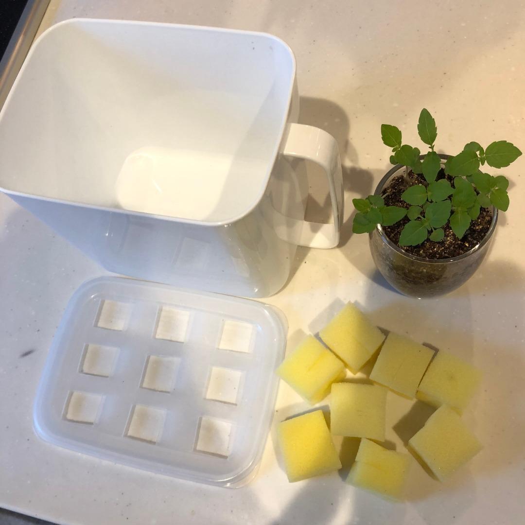 水耕栽培の始め方