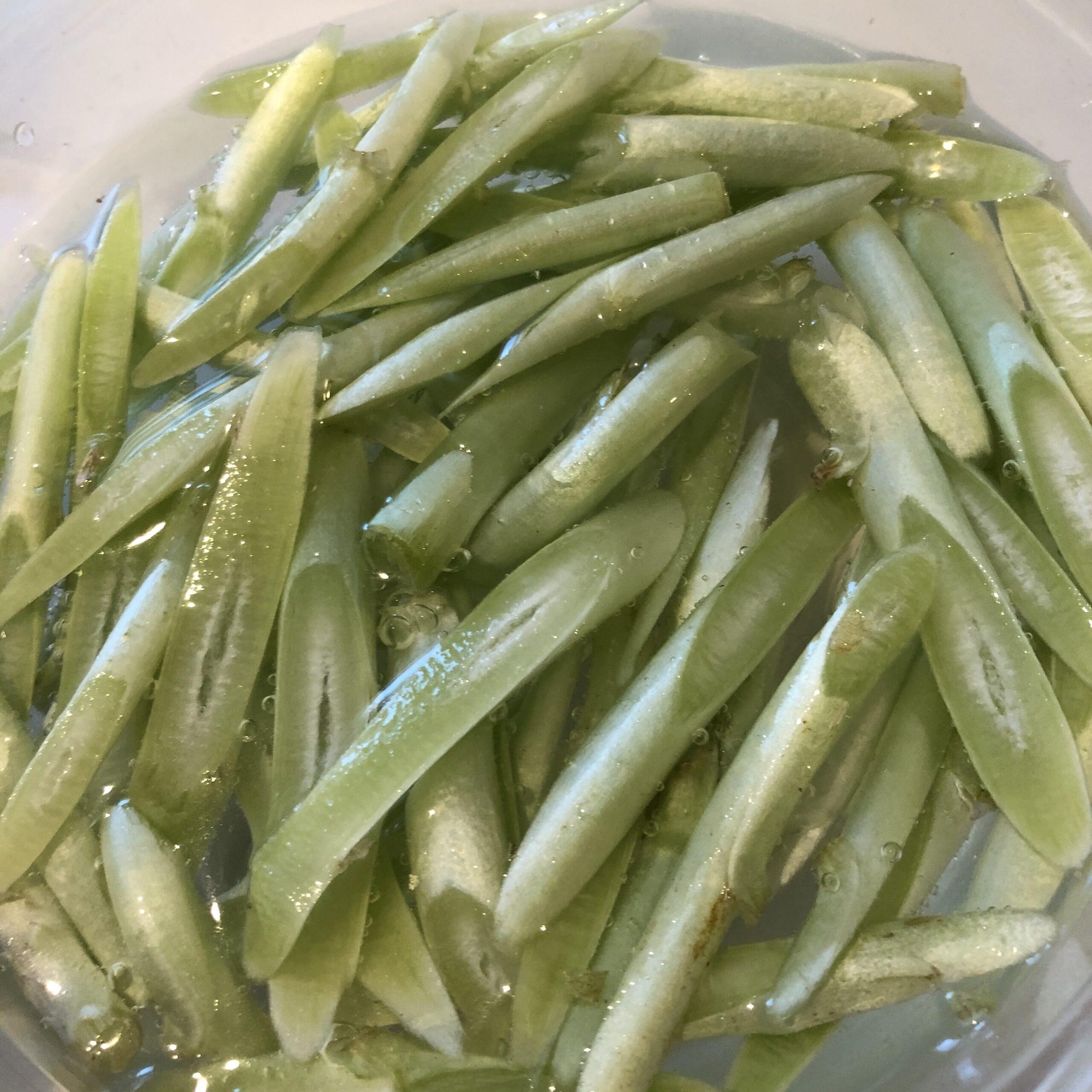 細い茎レタス